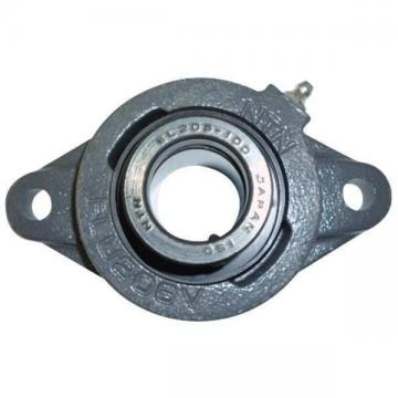 "NTN UELFLU-1M Flange Bearing,2-Bolt,Ball,1"" Bore"